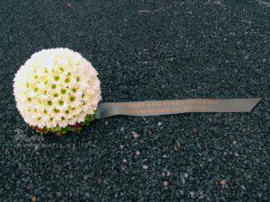 bloemenbol
