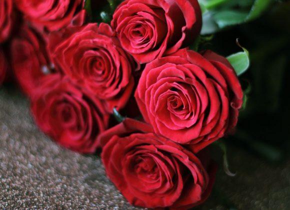 Verliefd…. op Valentijn!