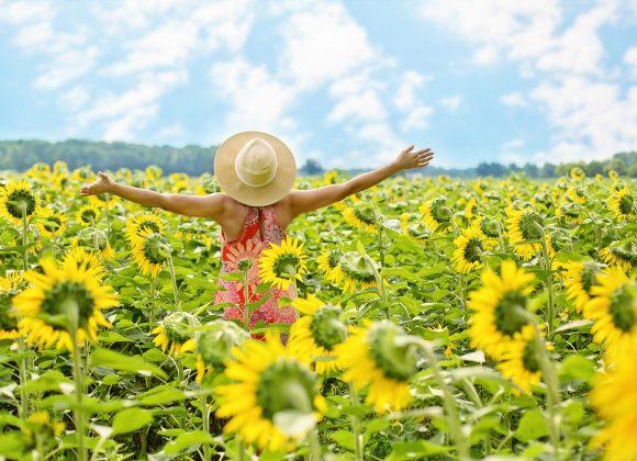 HEERLIJK!    Het zomert!
